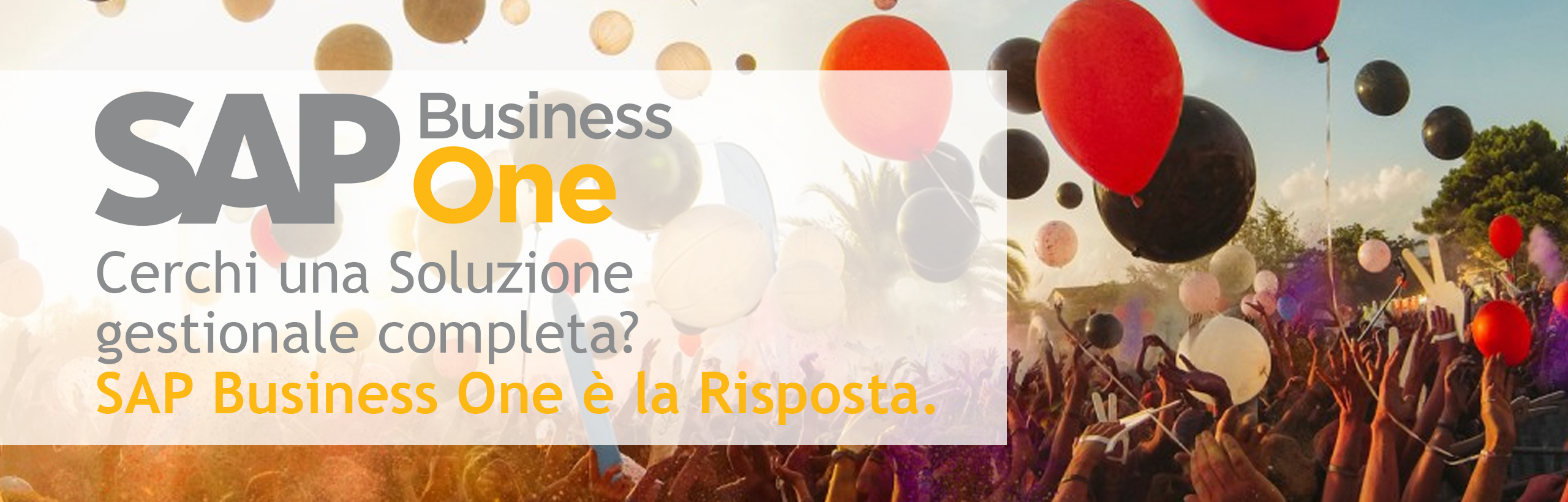 sap business one e brain system